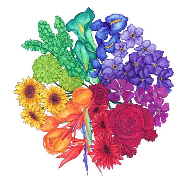 A Flower Color Wheel