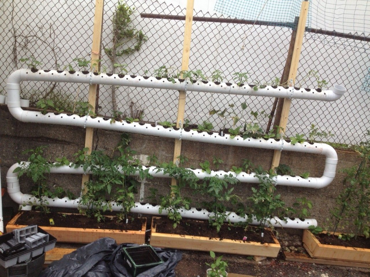 Raised Garden Fence Ideas Google Search Apartment 640 x 480