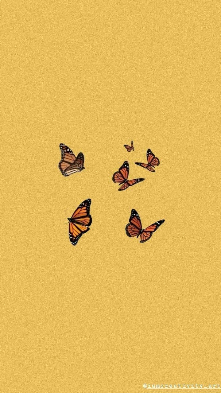 FONDO DE PANTALLA tumblr /mariposa
