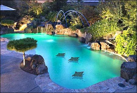 Love The 3 D Mantas Painted On The Pool Bottom Fun Idea To Paint Something On The Bottom Of