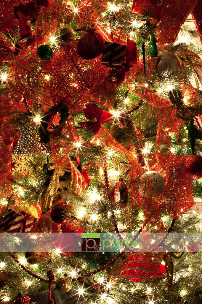 Taking pictures of a Christmas Treetutorial from Pure! I used - Luces De Navidad