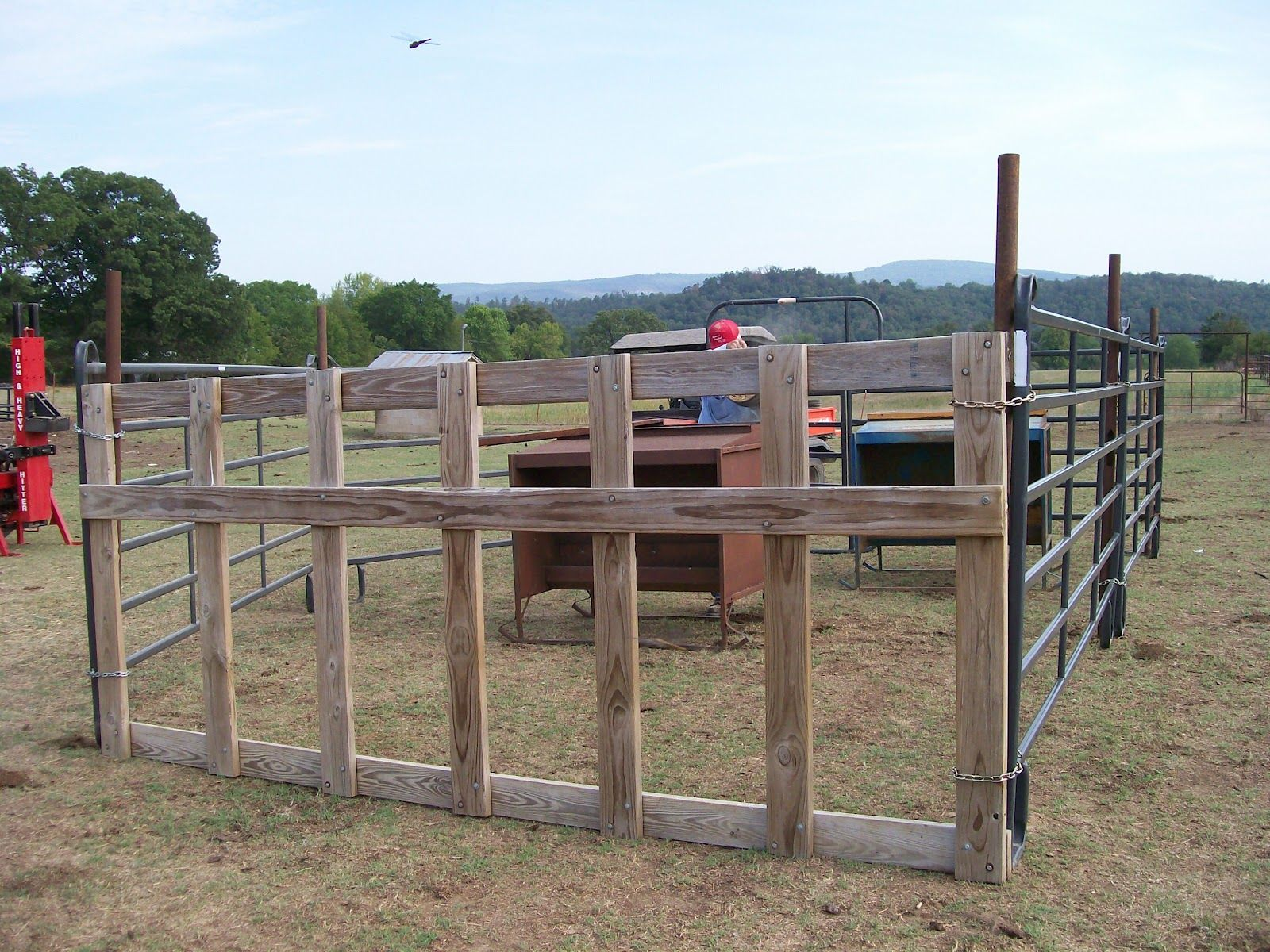 Diy Calf Shelter : Image result for diy calf creep feeder farm life