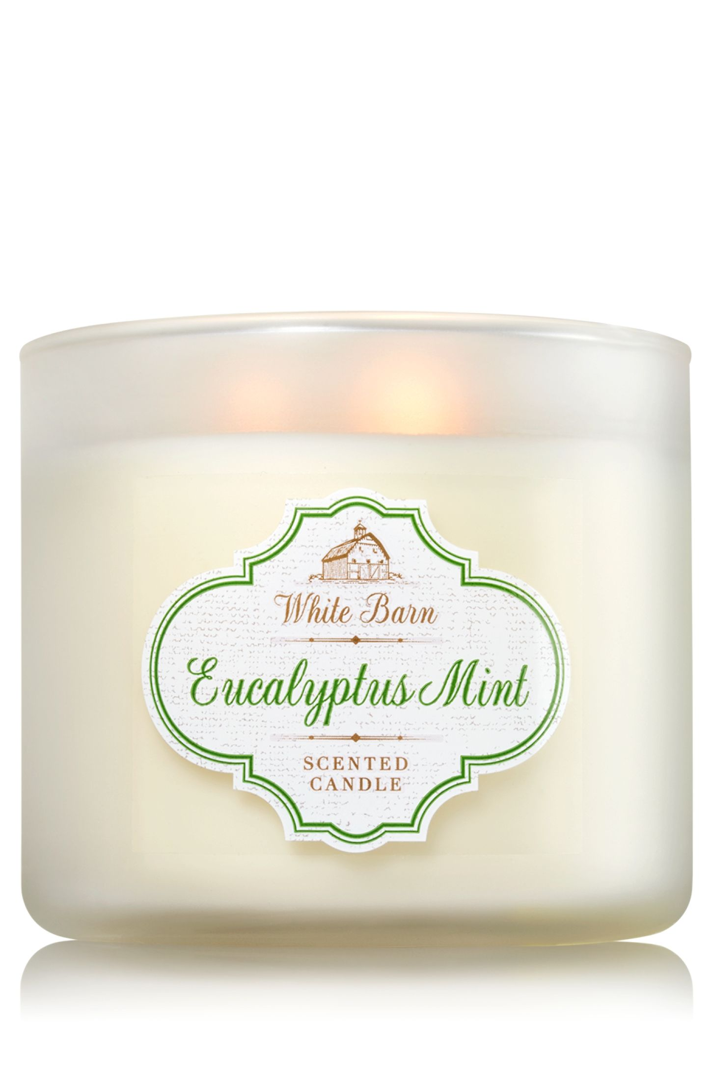 Eucalyptus Mint 3Wick Candle Home Fragrance 1037181