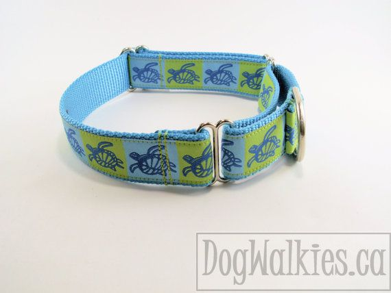 "Dog Collar - 1"" Wide - Blue Sea Turtles - Quick Release or Martingale Dog Collar"