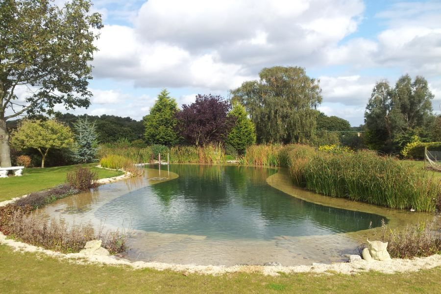 Natural Swimming Ponds Pool, Farm Pond Design Pictures