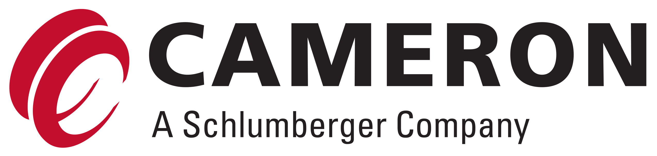 Get hiring info about the company Cameron A Schlumberger