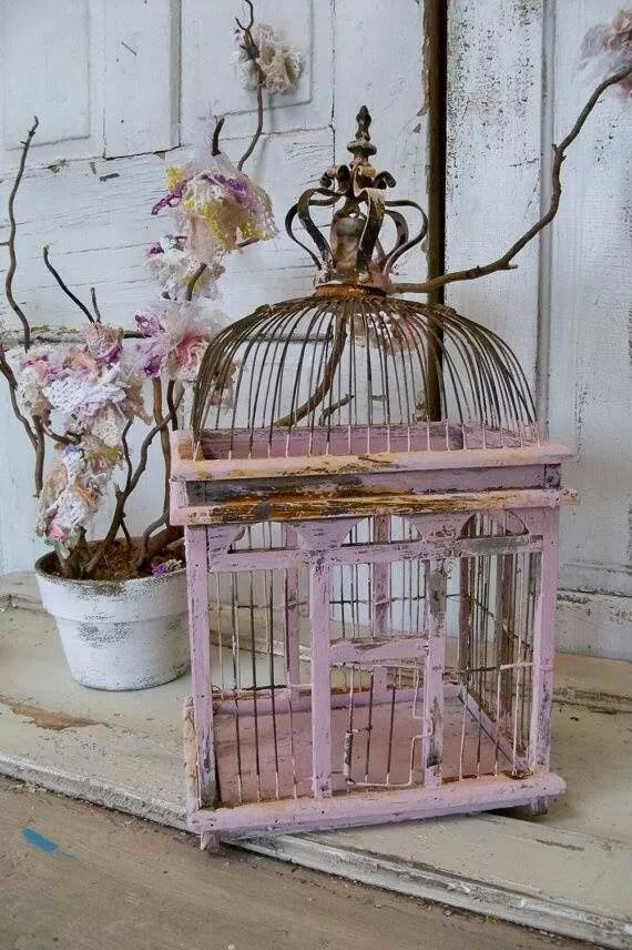 Pin By Lisa Hipkiss On Bird Cages Bird Cage Decor Shabby Chic Decor Chic Home Decor