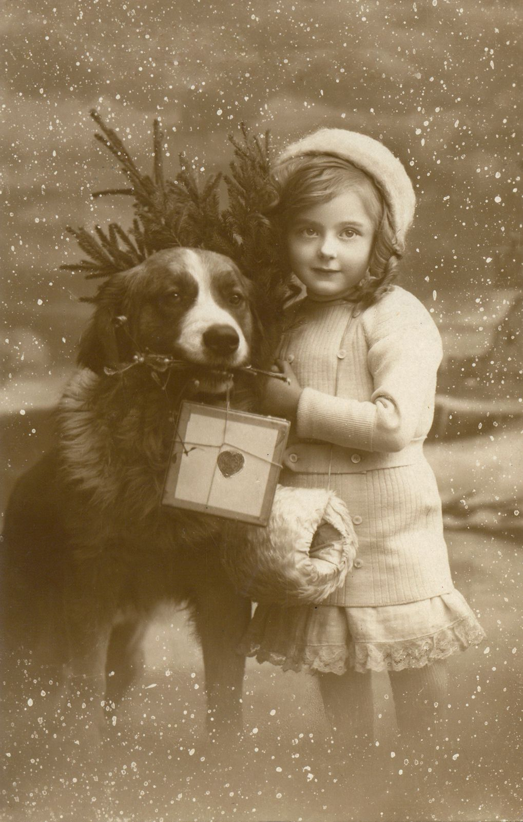 §§§ : A little girl and her Saint Bernard deliver Christmas : 1910s