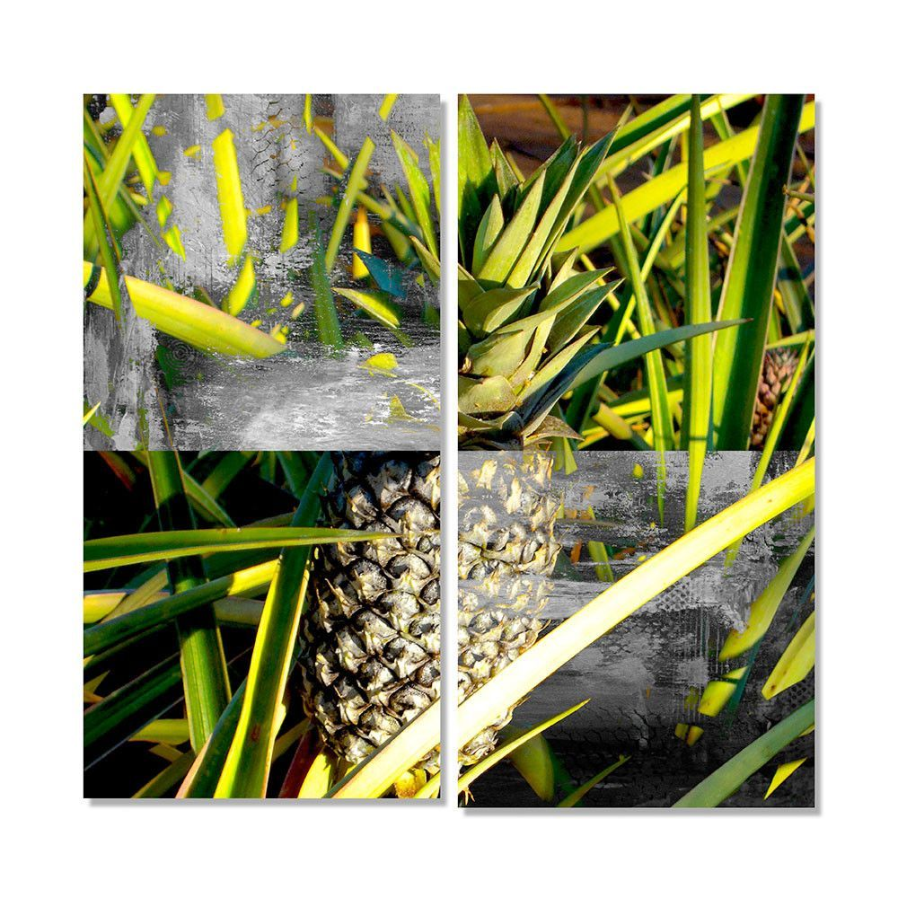 'Tropical Pineapple' by Alexis Bueno 2 Piece Photographic Printt on Wrapped Canvas Set