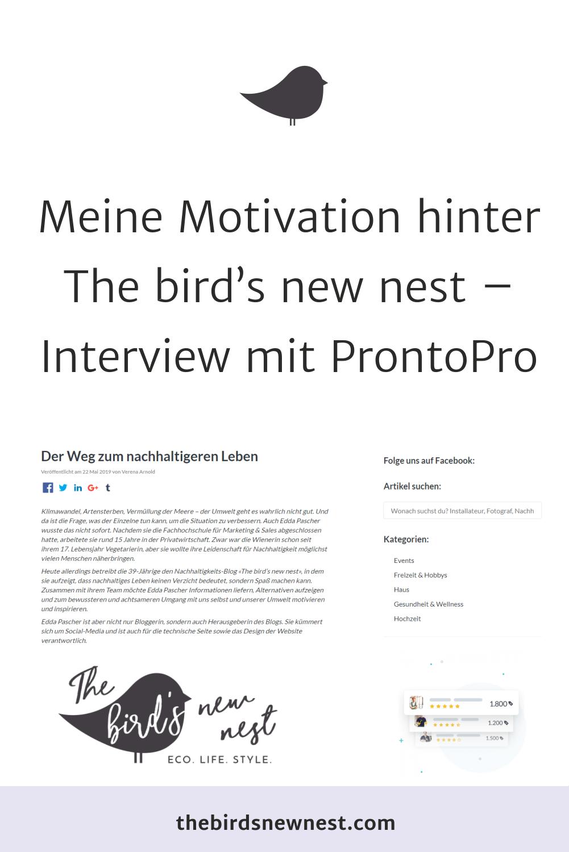 Meine Motivation Hinter The Bird S New Nest Interview Mit Prontopro The Bird S New Nest Frage Antwort Motivation Interessante Fragen