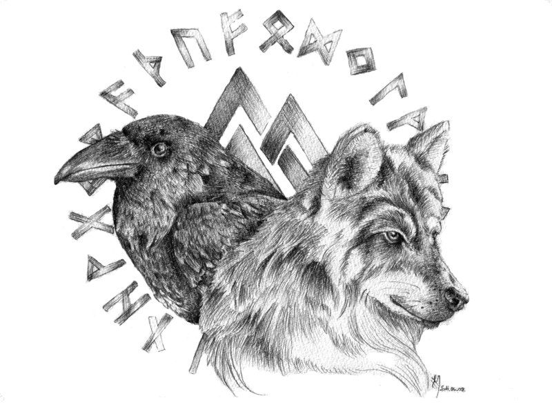Wolf And Raven Raven Tattoo Raven And Wolf Wolf Tattoos