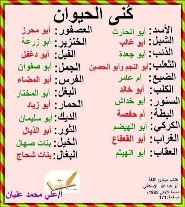 Arabic Learn Arabic Language Arabic Language Learning Arabic