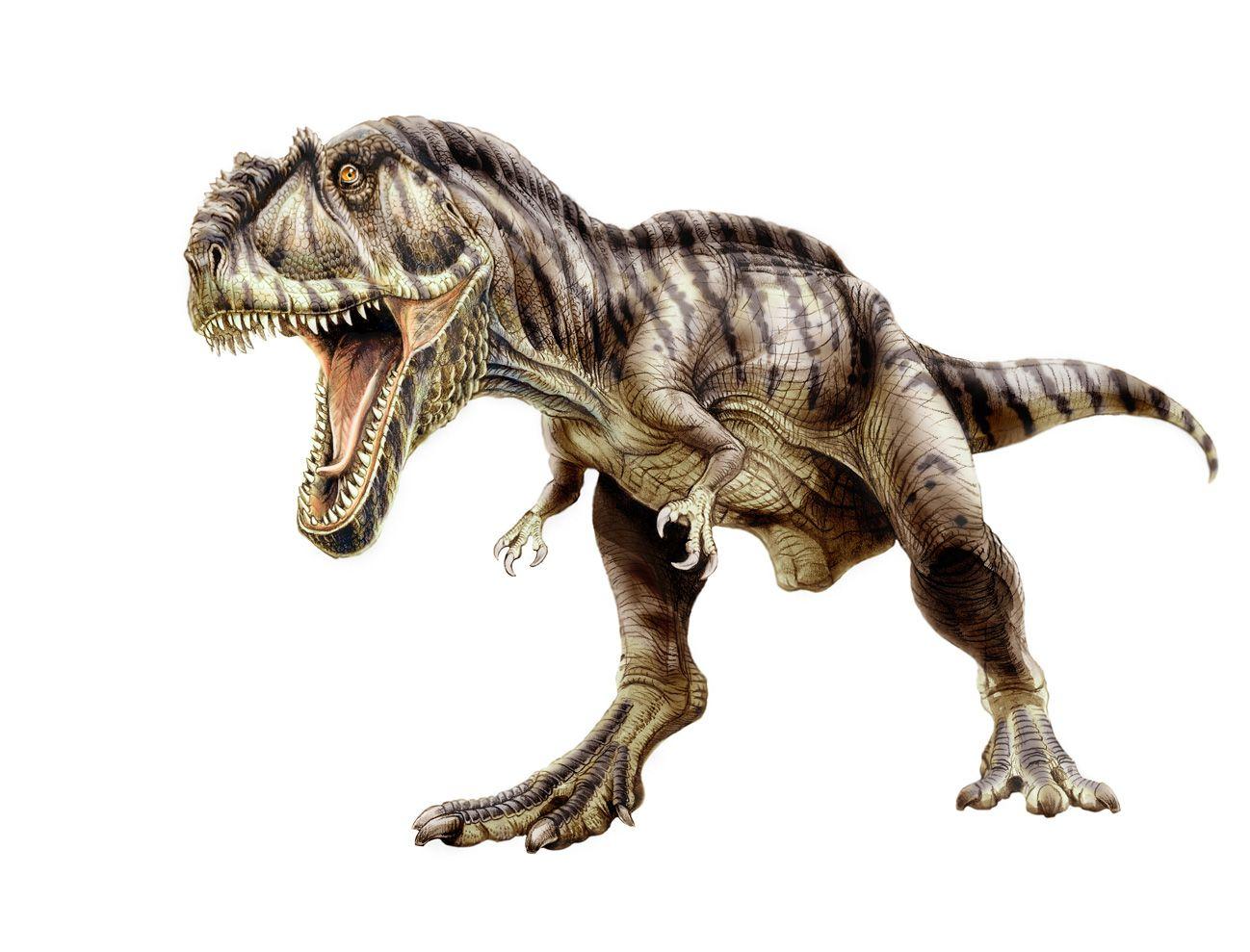 giganotosaurus by jorge antonio gonzalez gonzalezaurus on