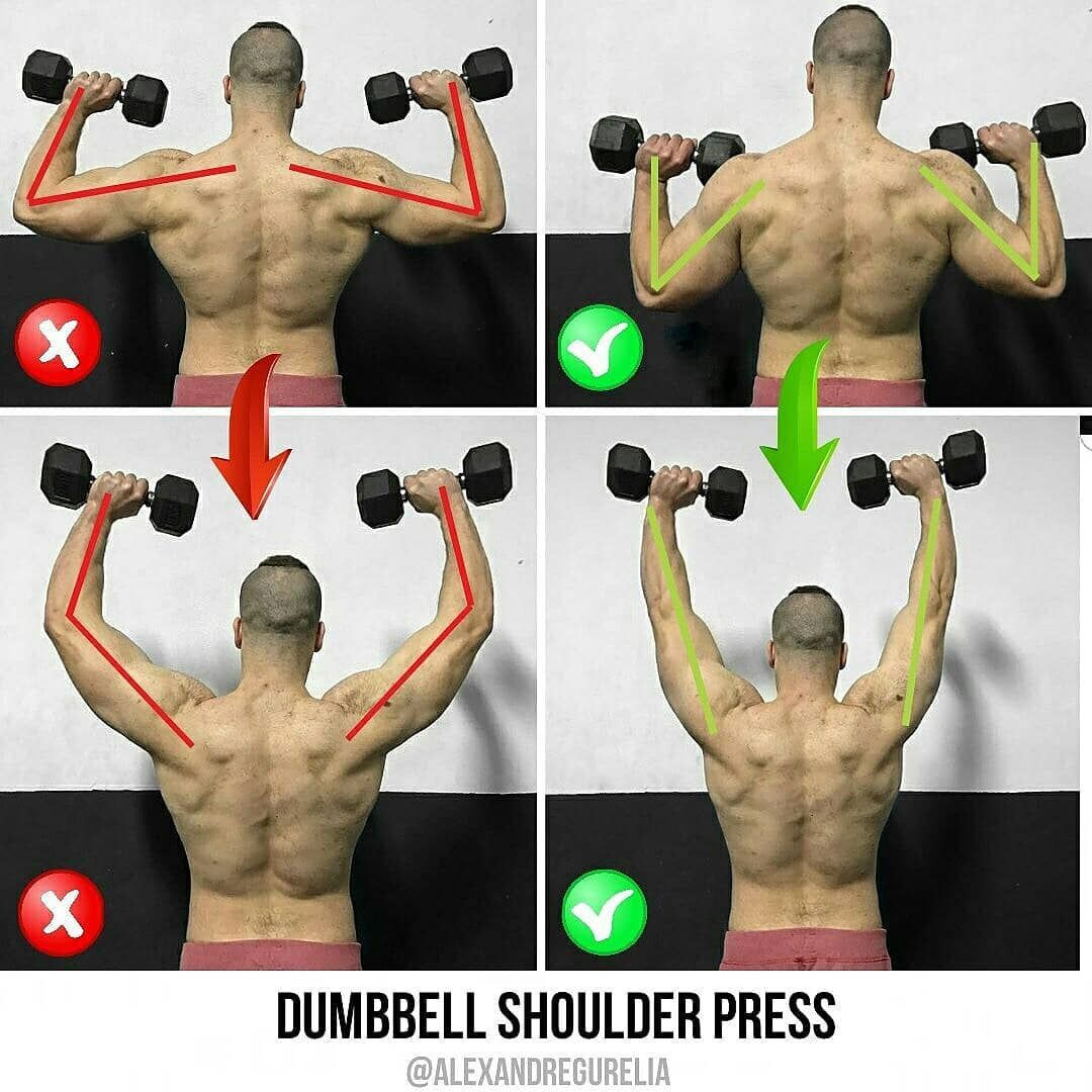 Dumbbell Shoulder Press Workout Pictures Fun Workouts Exercise