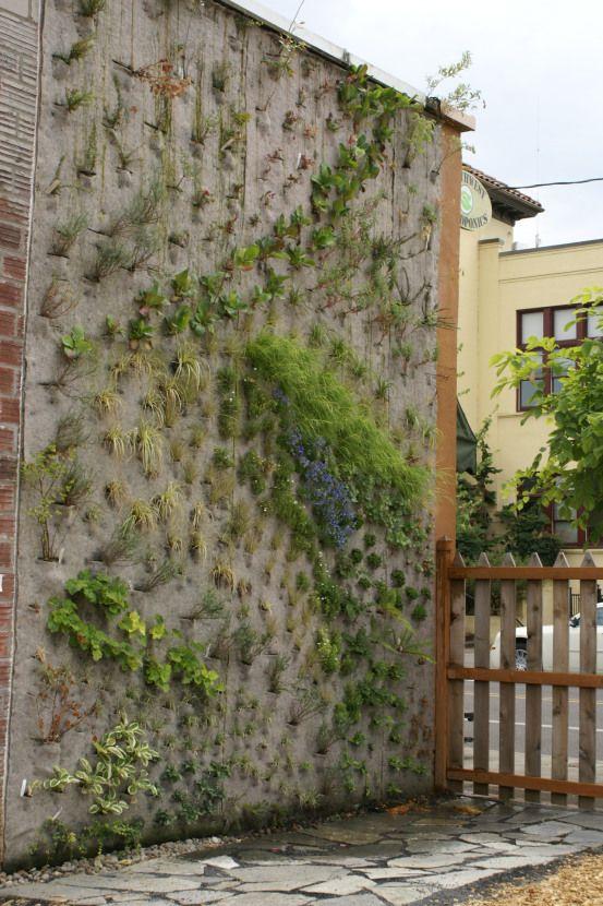 vertical garden institute Vertical Garden Institute | Garden - no new | Pinterest