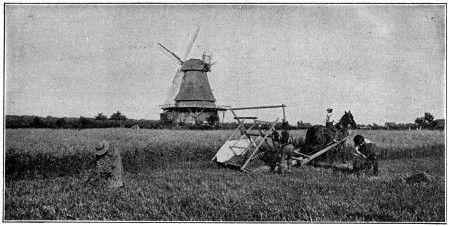 Field use of McCormic reaper