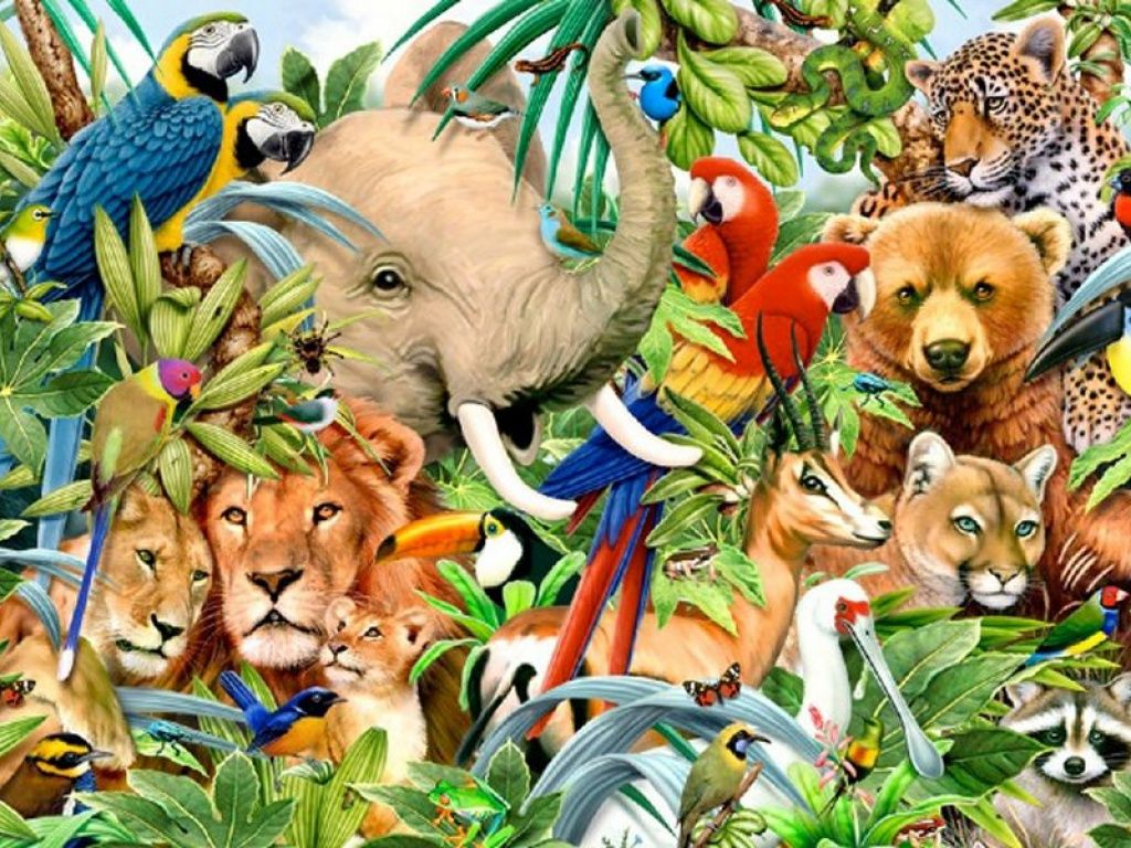 Jungle Animals One HD Desktop Wallpaper Animals, Your