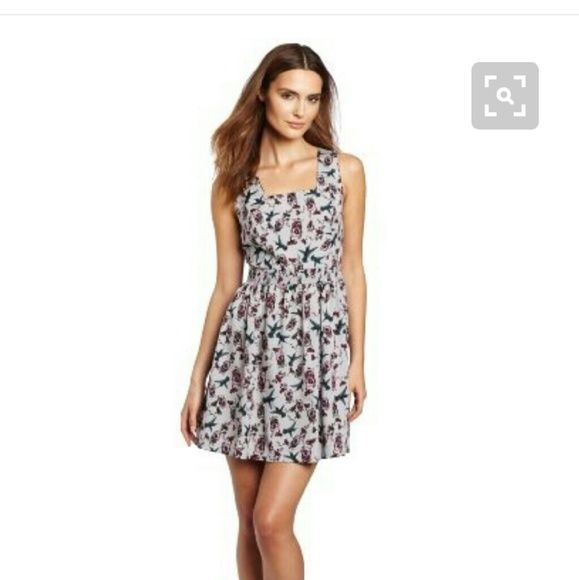 Dress Sleeveless. Hummingbird dress with exposed zipper up the back Kensie Dresses