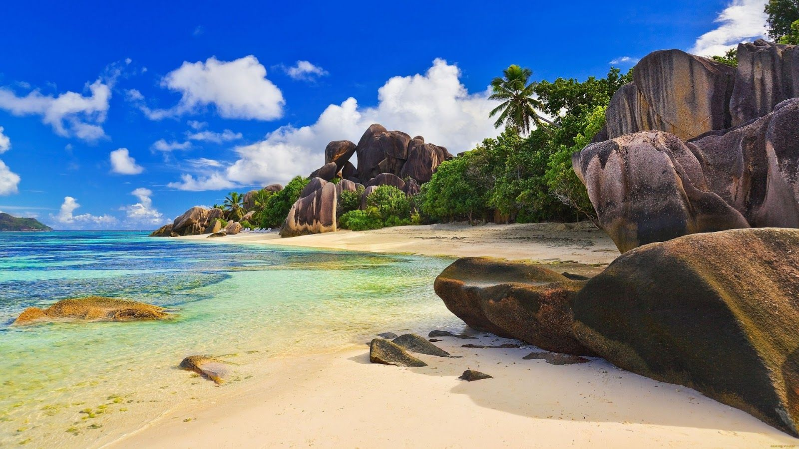 Beautiful Beaches In The World Google Search