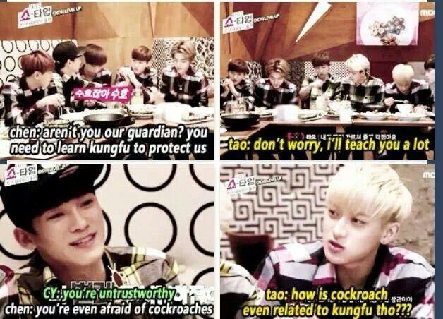 Hahahah oh gosh exo...fun fact guys: Its actually Baekhyun who is terrified of cockroaches