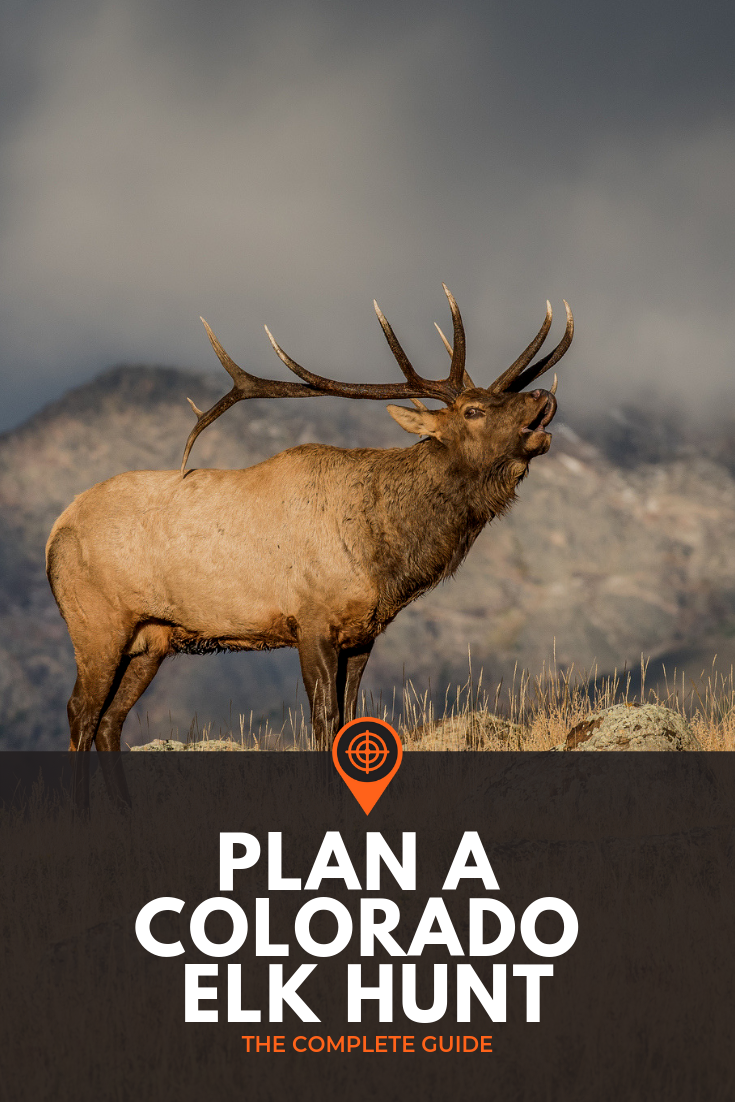 How To Plan A Colorado Elk Hunt The Complete Guide Elk Hunting Colorado Elk Hunting Archery Elk Hunting