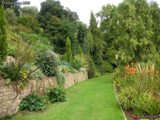 Les jardins en terrasses ou jardin m diterran en jardin - Creer un jardin mediterraneen ...