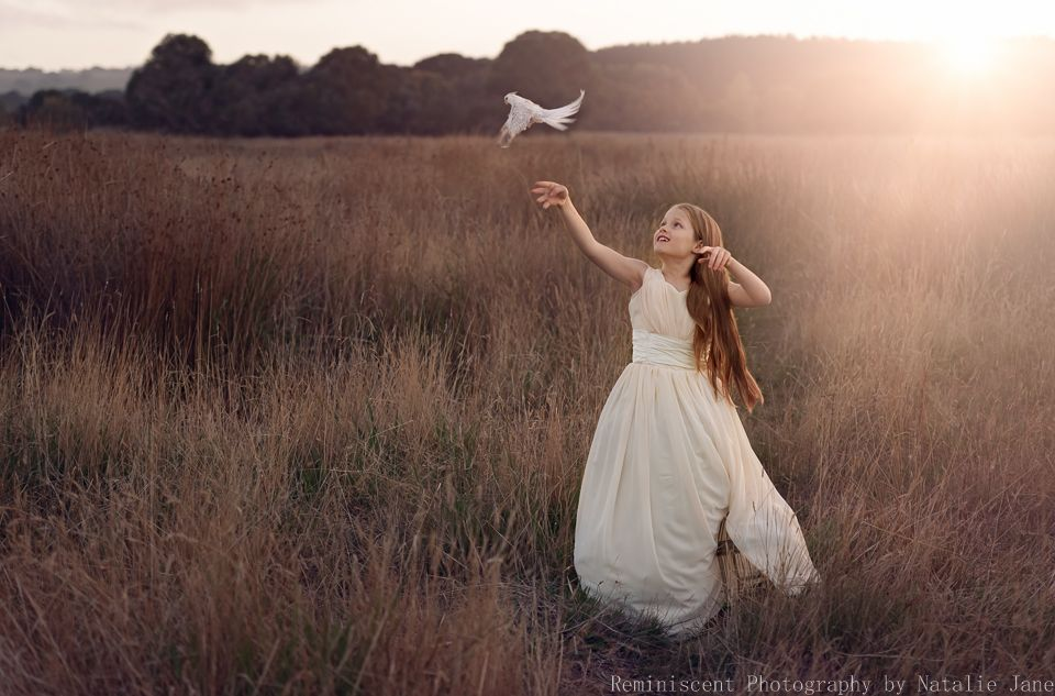 Image result for pictures of setting a bird free in a cage