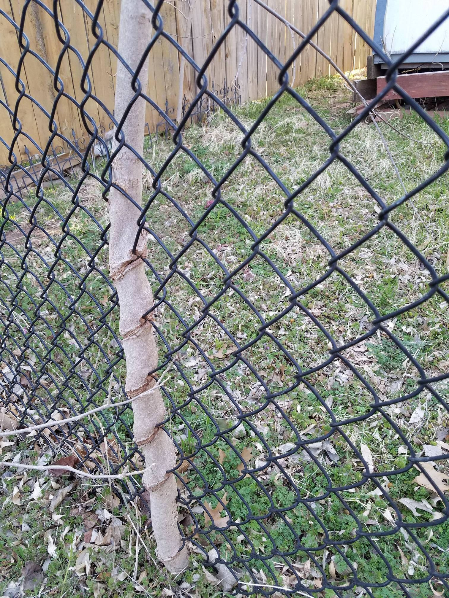 used Chain link fence for sale(direct factory ) | CHAIN LINK FENCE