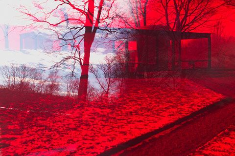 beautiful colour filtered Glass House (arch. Philip Johnson / photog. James Welling)
