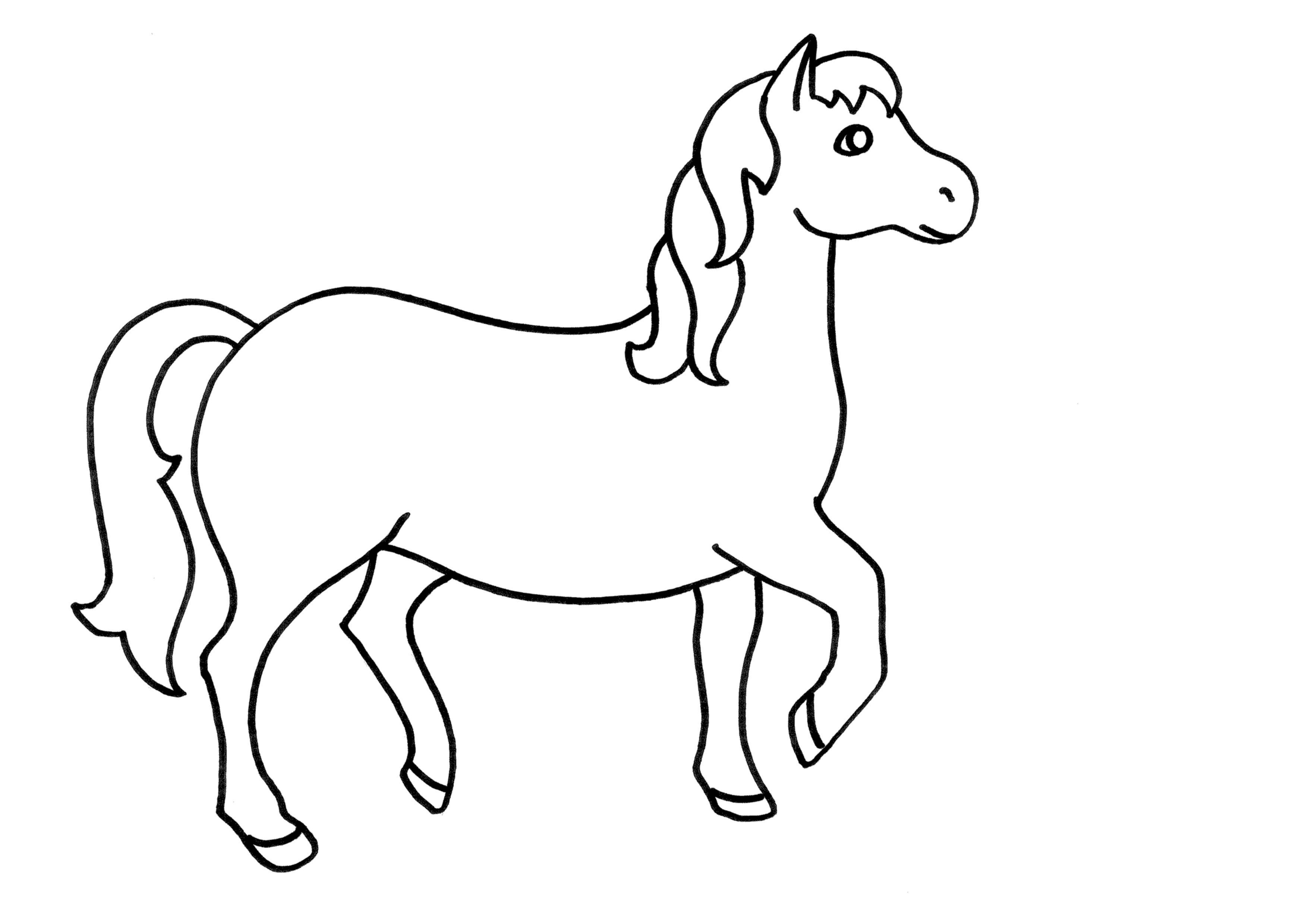 caballo, mamifero | Animales - Infantiles | Pinterest | Caballos ...