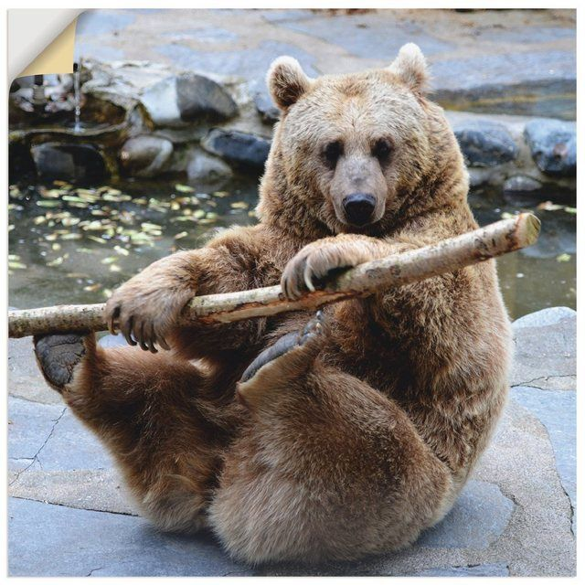 Wandfolie »Elke Schmid-Neebe: Bär« #bears