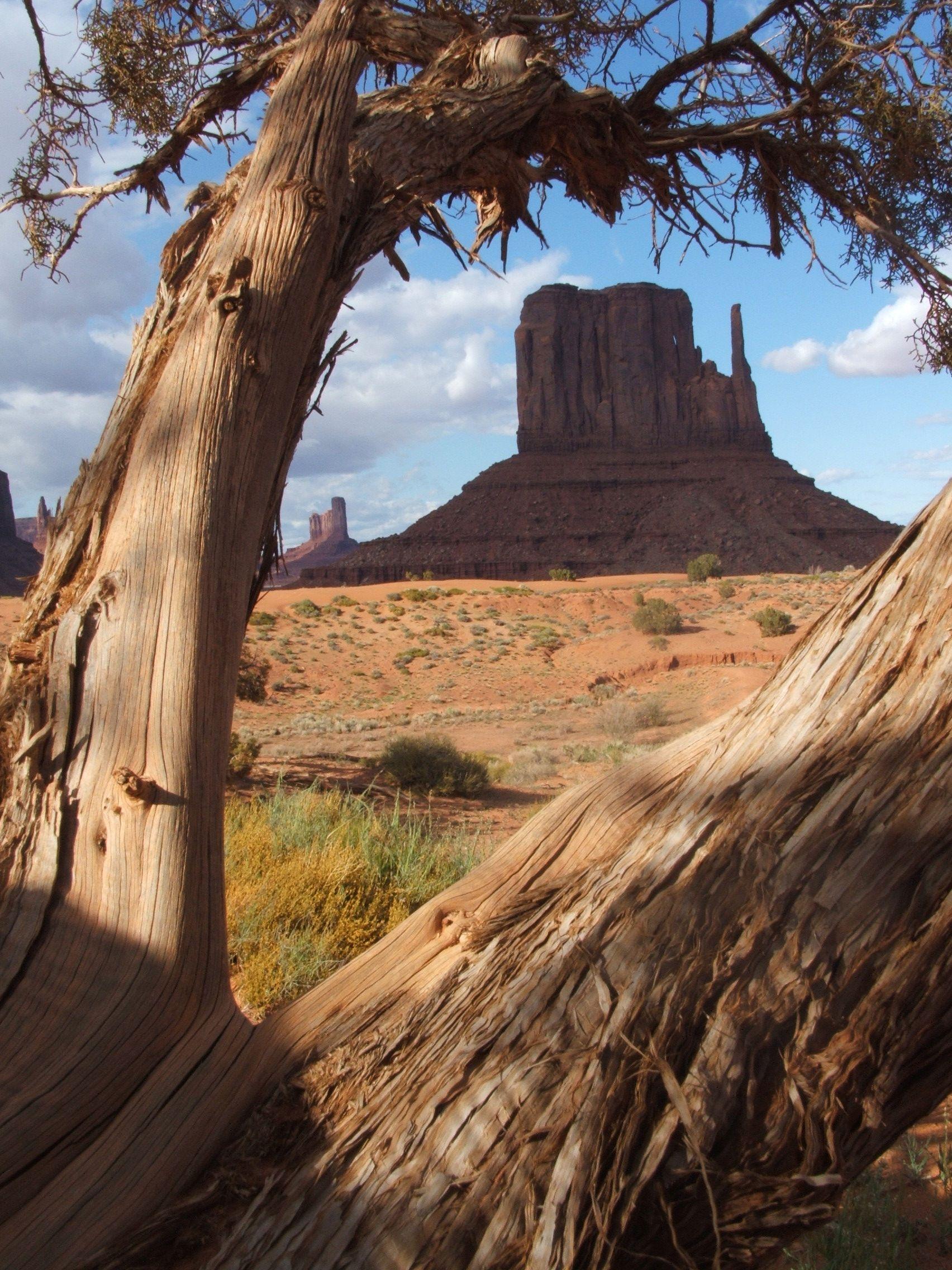 Kayenta, AZ Monument valley, Travel