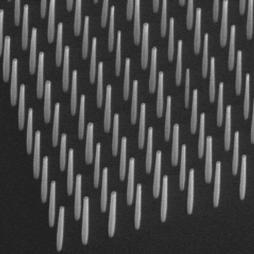 Uniform Nanowire Arrays For Science And Manufacturing Science Material Science Materials Science