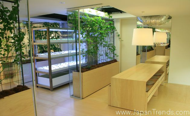 eco office. Tokyo\u0027s Pasona Urban Farm In Office Helps To Reduce Emissions Significantly Eco I