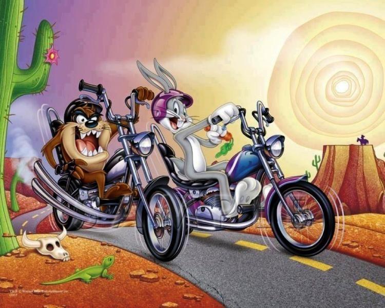 5db563fb51894 Taz   Rabbit !
