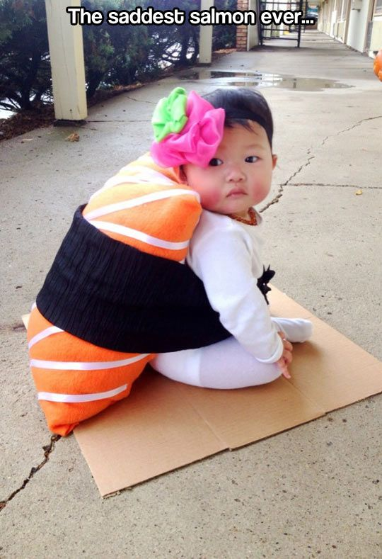 9542a200e1f6b The saddest salmon… | qt | Cute baby costumes, Baby costumes, Cute ...