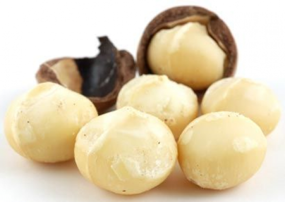 Macadamia Nuts Adding Nuts And Seeds To Your Diet Can Yield Heart Health Benefits Macadamia Nuts Also Contain Fib In 2020 Food Dog Food Recipes Food Processor Recipes