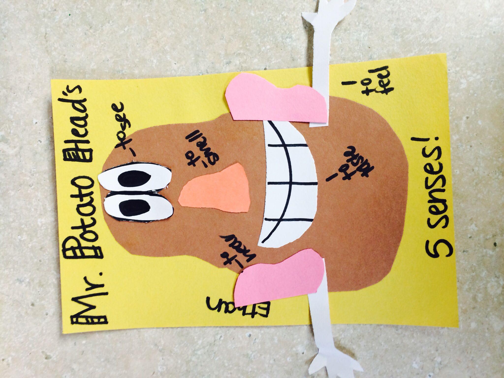 Mr Potato Head 5 Senses