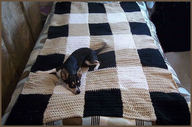 Plaid crochet blanket afghan free beginner pattern use any 3 use invisible sewing to create this crochet twin size blanket not made whole but in columns makes this blanket perfect no flipping a heavy blanket every dt1010fo