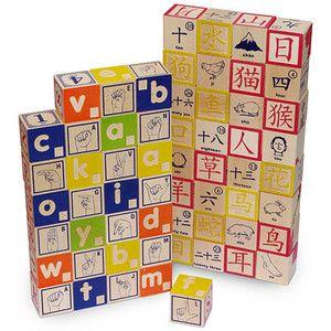 Alphabet block sets braille sign language chinese japanese or alphabet block sets braille sign language chinese japanese or hieroglyphics urtaz Gallery