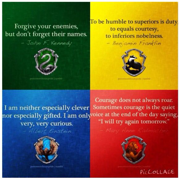 Pin By Bel On The Boy Who Lived Harry Potter Houses Harry Potter Quotes Harry Potter Universal