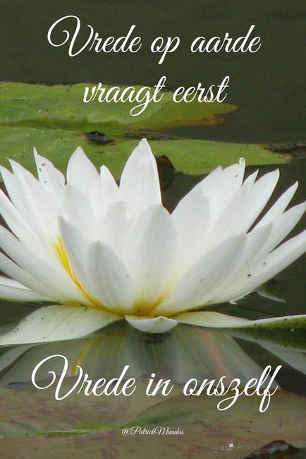 Citaten Over Vrede : Vrede op aarde vraagt eerst vrede in onszelf mooie