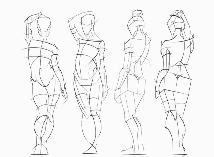 Pin by Abhijith Asok on Natomy | Figure drawing reference