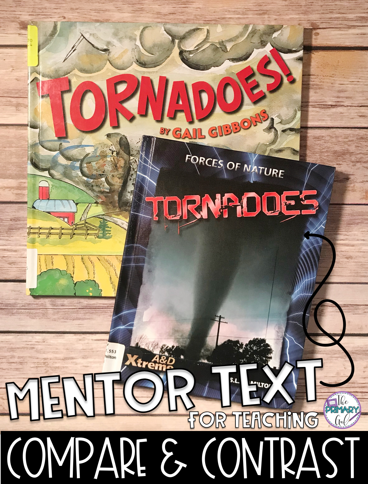 Mentor Texts Your Students Will Love In March