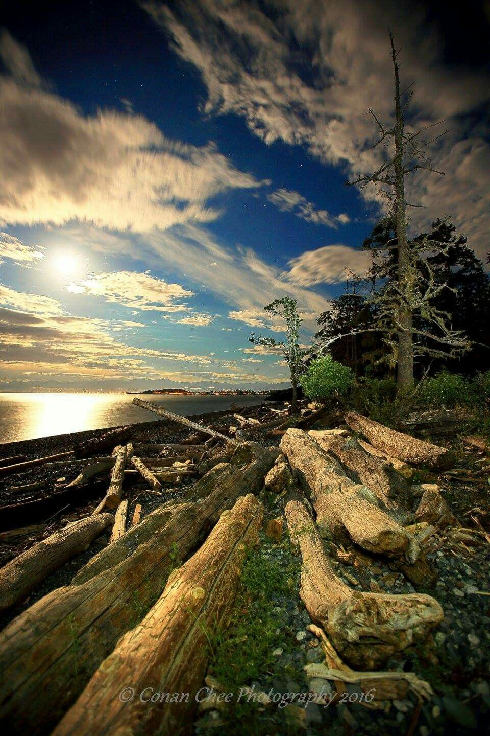 Pin By Bonnie Friesen On Dreaming Of Vancouver Island Pinterest