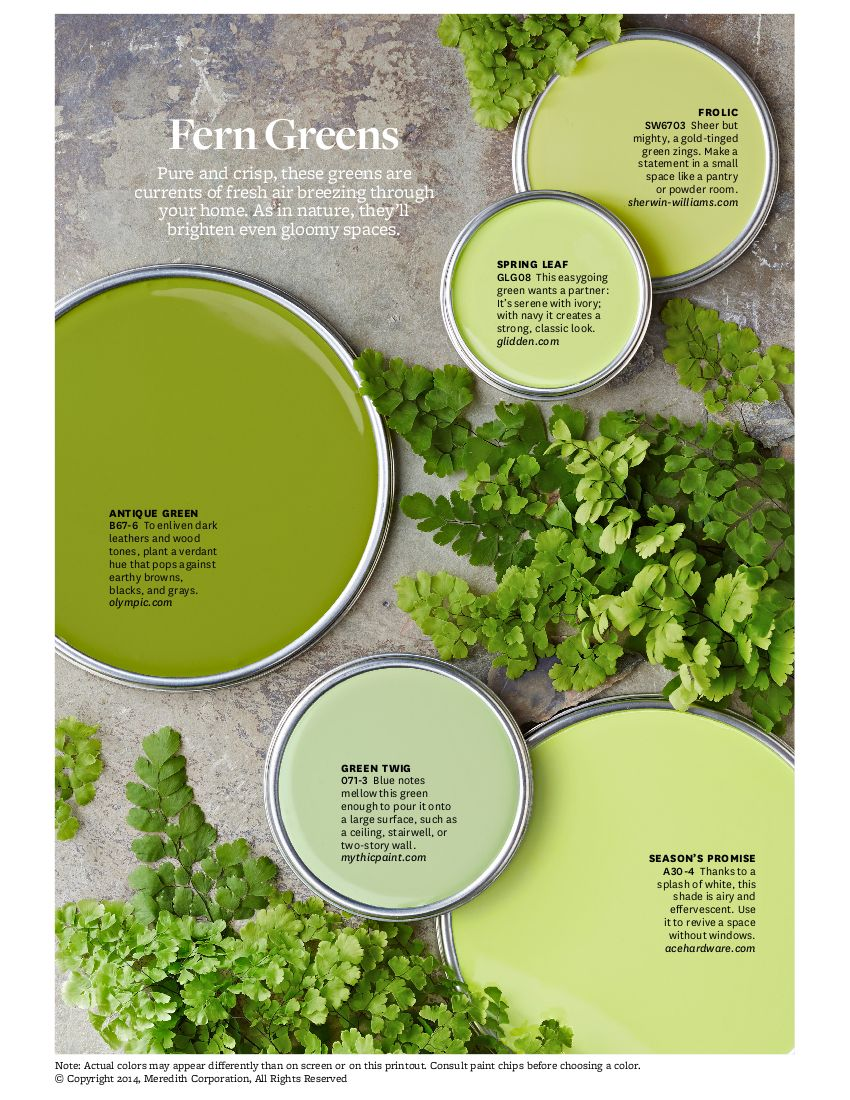 Greens: If you\'re looking for a green with a little zip, give fern ...