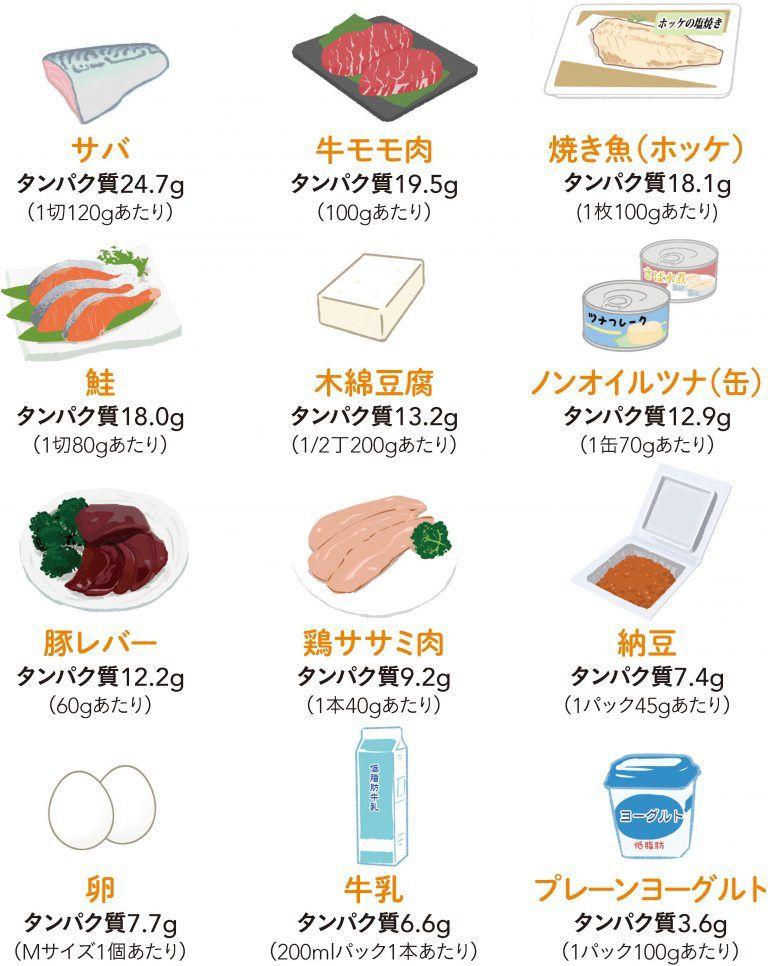 タンパク質 の 多い 食材