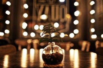 Homemade Indoor Christmas Decorations