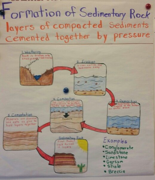 Formation Of Sedimentary Rock Anchor Chart Science Anchor Charts