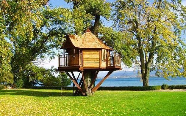 Spectacular Tree House Designs Offering Romantic And Intimate Living Spaces Tree House Designs Cool Tree Houses Tree House Plans